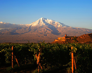 Tours to Armenia - wine tours