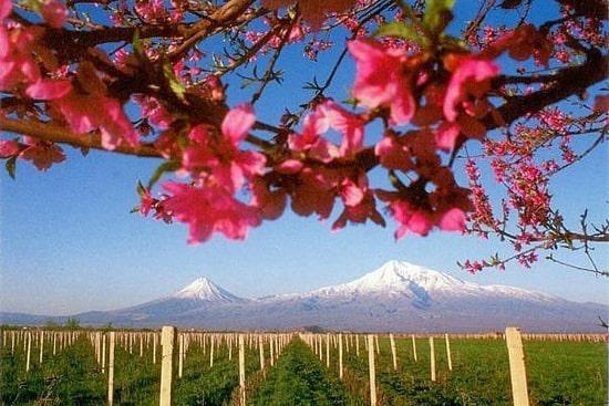 Туры в Армению на майские праздники, туры в Ереван в мае