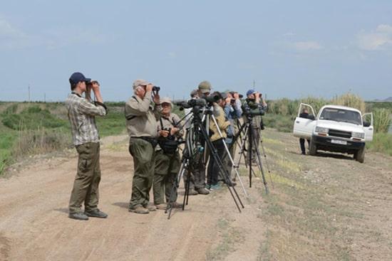 Наблюдение за птицами в Армении, орнитологические туры