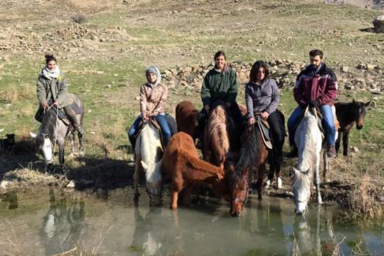 Author's tour: horse trekking in Armenia (7 days)