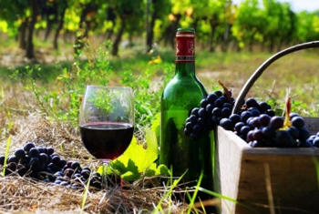 Wine tours - Armenia